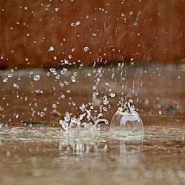 splash 2 by Hale Yeşiloğlu - Abstract Water Drops & Splashes ( abstract, splash, drop, drops, rain )