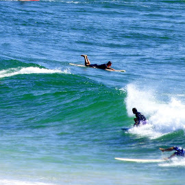 by Robyn Downie - Sports & Fitness Surfing