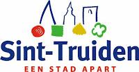 Punch Powertrain Solar Team Fortune 100 Gemeente Sint-Truiden