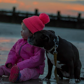 Dog & Child at sunset by Jenny Trigg - Babies & Children Toddlers ( child, sunset, beach, dog,  )