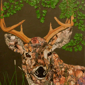 Oh Deer by Valerie Aebischer - Mixed Media All Mixed Media
