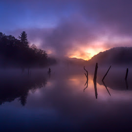 Rise by Kevin Frick - Landscapes Waterscapes ( purple, faog, west virginia, sticks, reflections, lake, sunrise )