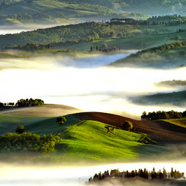 foggy by Stanley P. - Landscapes Prairies, Meadows & Fields
