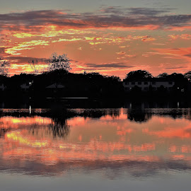 Pink Champagne by Kathy Woods Booth - Landscapes Sunsets & Sunrises ( pink, reflections, dusk, sunset, silhouette, mirrored reflections, sundown )