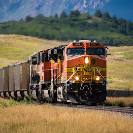 by Rick W - Transportation Trains