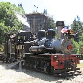 by Nancy Gray - Transportation Trains