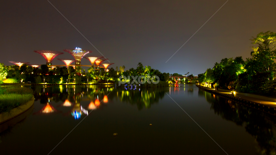 Garden by the Bay by Rafael Uy - City,  Street & Park  Skylines ( cityscapes, garden by the bay, sg, garden, singapore, nightscapes )