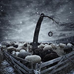 Winter-tale2.jpg