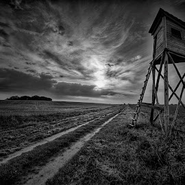 The Hunting Blind by Aleksander Grzelak - Black & White Landscapes ( clouds, field, deer blind, black and white, sunset, path, hunting, pentax, road, poland )