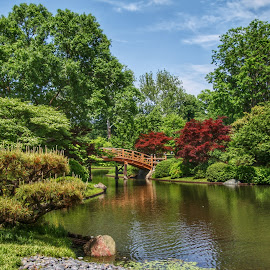 Japanese Gardens by Margie Troyer - City,  Street & Park  City Parks