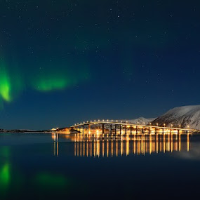 Aurora Borealis at Risøyhamn Norway. by Kenneth Pettersen - Landscapes Starscapes ( northen light., aurora borealis )