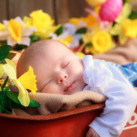 Lilly Easter 2 by Vanessa Venatrix - Babies & Children Babies ( sleeping baby, daffodil, baby girl, easter eggs, sleeping, sleep, cute, newborn, child, newborn photography, girl, easter, daffodils, baby, flower )