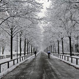 verso l'infinito by Orazio Mariani - City,  Street & Park  Street Scenes ( freddo, neve,  )