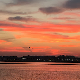 Reagen National Airport sunset by Gary Bornstein - Instagram & Mobile iPhone