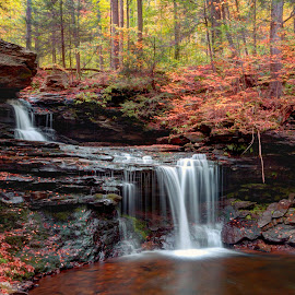 October Evening Below R B Ricketts Falls by Gene Walls - Landscapes Forests ( stream, waterfall, r b ricketts falls, forest, leaves, usa, ricketts glen, r b ricketts, foliage, falls, state park, creek, fall, pennsylania, trees,  )