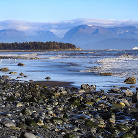 Bishops Beach by Patricia Phillips - Landscapes Travel ( alaska beaches homer bishops autumn )