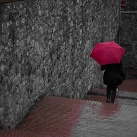 Rainy days by Stefania Kleynendorst - City,  Street & Park  Street Scenes