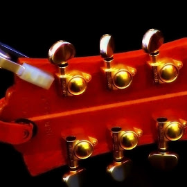 High Strung by Lyne Beringer - Artistic Objects Musical Instruments ( music, up close, musical instrument, sound, guitar )