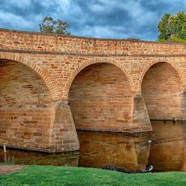 Richmond bridge by Cora Lea - Buildings & Architecture Bridges & Suspended Structures ( #richmondbridge, #oldestbridge, #tasmania )
