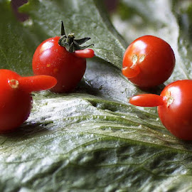 Puutarhaparlamentti nokikkain :D by Pekka Nisula - Nature Up Close Gardens & Produce