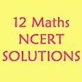 CLASS 12 Maths NCERT Solutions APK for Bluestacks