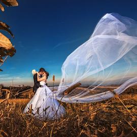 bride & groom by Dejan Nikolic Fotograf Krusevac - Wedding Bride & Groom ( smederevo, kraljevo, aleksandrovac, vencanje, jagodina, paracin, krusevac, svadba, kragujevac, vrnjacka banja )