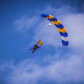 Sky Dive by Cheryl Muir - Transportation Other ( sky, sky dive, parachute )