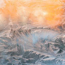 Iced Sunset by Iain Mavin - Abstract Patterns ( abstract, cold, window, blue, ice, glass, yellow, sunsey, feathers )