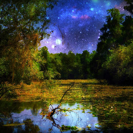 by Ken Byrne - Digital Art Places ( reflection, waterscape, forest, landscape, space, highlights, shadows, nature, stars, trees, night, light, river, skyscape,  )