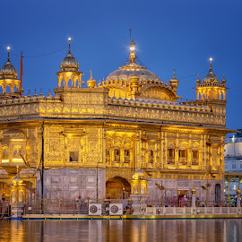 Golden Temple by KP Singh - Buildings & Architecture Places of Worship ( punjab, sikhism, india, amritsar, golden )