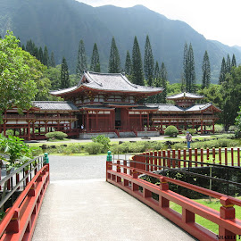 Byodo-In by Shari Linger - Buildings & Architecture Places of Worship ( cemeteries, valley of the temples, tropical, japanese, oahu, hawaii, buddhist temples )