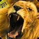 Angry Lion Hunting Season 2017
