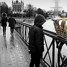 gonfalon by Vygintas Domanskis - City,  Street & Park  Street Scenes ( gonfalon, stockholm, bridge, people, rain,  )