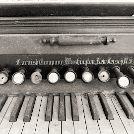 Organ B&W by Kathryn Berry - Artistic Objects Other Objects