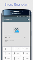 Screenshot of SafeInCloud Password Manager