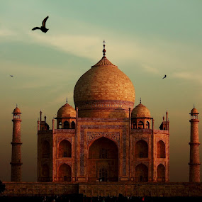 Taj Mahal by Debajit Bose - Buildings & Architecture Statues & Monuments ( statue, building, taj mahal, agra, monument, india, architecture )