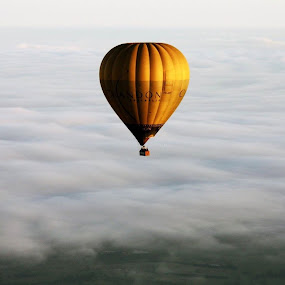 Hot air ballooning, Yarra Valley by Chris Romano - Uncategorized All Uncategorized