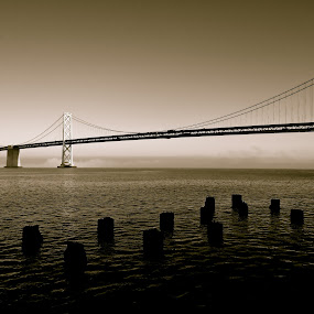 Bay Bridge by Jeff Steiner - Buildings & Architecture Bridges & Suspended Structures