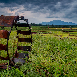 Agricultural Wheel by Badroe Zaman - Landscapes Prairies, Meadows & Fields ( village, season, indonesia, landscape, fields )