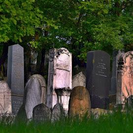Cemetery by Marie Vachulková - City,  Street & Park  Cemeteries