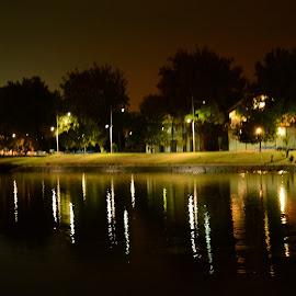 Shining Grass by Nimit Rastogi - City,  Street & Park  Neighborhoods ( riverside, streetlight, melbourne, australia, trees, night, river )