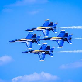 Blue Angles by Larry Pinkerton - Transportation Airplanes ( blue sky, airplanes, blue angles, blue, fighter jet, jet )