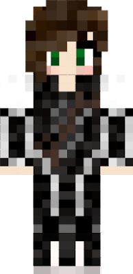 Took a skin and edited the back and front with arrows
