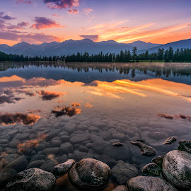 Canadian Rockies Sunrise by Yves Gagnon - Landscapes Sunsets & Sunrises ( plant, reflection, fashion, direction, tranquil scene, travel, coastline, tree trunk, colour image, photography, tree, lakeshore, nature, no people, lake mildred, coniferous, jasper national park, water, canada, alberta, green, scenics, forest, lake, emotion, colours, natural parkland, wilderness, national park, north america, sunset, water's edge, horizontal, outdoors, branch, sunrise, tranquility, day )