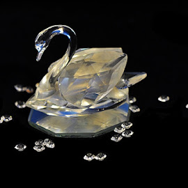 blue swan on the lake by Paul Wante - Artistic Objects Still Life ( water, blue, still life, pearls, swan,  )