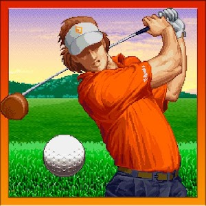 NEO TURF MASTERS For PC