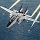 F-14 Plane Driving