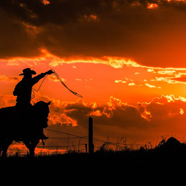 Evening Warmup by Gary Hanson - Sports & Fitness Rodeo/Bull Riding ( hill, cowboy, sunset, rodeo, tie roper, warm up,  )