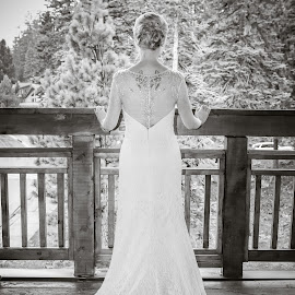 Perspective by Lisa Wellott - Wedding Bride ( forrest, wedding, wedding dress, mammoth, bride )