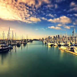 City of Sails by Jomy Jose - Transportation Boats ( city of sails, auckland, boats, sails, morning, westhaven marina )